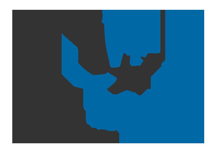 All Stars begeleiding